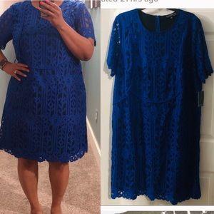 ELOQUII Cobalt blue lace dress